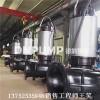 不锈钢排污泵_大流量排污泵_图片_天津_价格