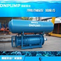 枢纽工程潜水泵轴流泵