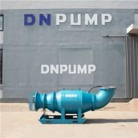 天津供水工程潜水轴流泵